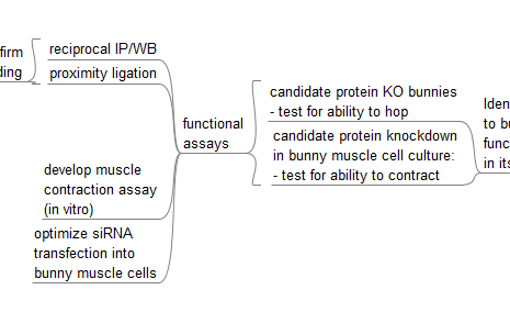 Fig_5_functional_assay_optimization